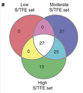 Fig 5a. Venn-diagram of genes differentially expressed in prospectively isolated CWR22 OT-tumour cells with low (expressing EpCAM, CD44 or α2-integrin), moderate (expressing TRA-1-60, CD151 or CD166) and high (triple-marker-positives) sphere/tumour-forming efficiencies (S/TFE).