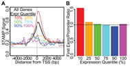 Fig 6ab. Correlation of transcript expression with the pattern of intragenic methylation in M091 cells.