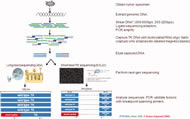 Fig 1. Schematic of workflow. Modifications to a previously reported TK screening platform (Chmielecki et al.,2010) were incorporated to take advantage of short-read paired-end sequencing using an ABI SOLiD sequencer.