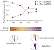 Fig 1. Illustrative case from La Starza et al. where interphase FISH was used to understand the clonal hierarchy and clinical correlates in TET2 altered myeloid malignancy.