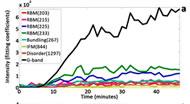 Fig 3. (a) Uptake of several carbon nanotube Raman modes measured within a live macrophage.