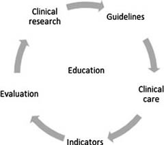 Fig 1. The quality circle for healthcare improvement.