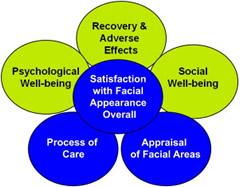 Fig. 1. FACE-Q conceptual framework.