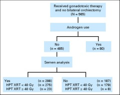 Fig 1. CONSORT diagram showing patient population from which semen analysis data were derived. HPT XRT, hypothalamic-pituitary irradiation.
