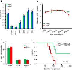 Figure 7. Germline Loss of Itgb3 Selectively Impairs Leukemogenesis