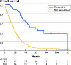 Fig 2. Kaplan–Meier survival analysis of overall survival using landmark analysis. The time origin is shifted 7 months to exclude those patients in the nonconversion group that died or were lost to follow-up before the earliest resection was performed.