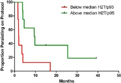 Fig 1. Kaplan Meier curves of persistence on protocol in patients with tumors showing H2T/p95 expression ratio values higher (solid line) or equal/lower (dotted line) than the median value of 46.60.