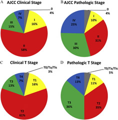 Fig 1.Stage distribution in bladder cancer patients. (A) Overall American Joint Committee on Cancer (AJCC) clinical stage, (B) overall AJCC pathologic stage, (C) clinical tumor (T) stage, (D) pathologic tumor (T) stage.