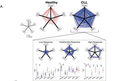 Fig 2. Variability in the Signaling Profile Allows Partioning of CLL Patients Into Distinct Prognostic Groups. A Graphic representation of all five phosphoresponses for CLL patients (blue, n = 110) as compared to the healthy controls (red, n = 11).