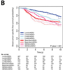 Fig 3. Kaplan-Meier 10-year breast cancer-specific survival analyses in the molecular taxonomy of breast cancer international consortium dataset (all patients). B) Based on intrinsic subtype and cHER2 status.