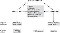 Fig 1. Estrogen receptor (ER)–positive and ER-negative breast cancers are fundamentally different diseases.