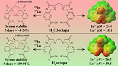 Abstract  The acyclic ligands H4C3octapa and p-SCN-Bn-H4C3octapa were synthesized for the first time, using nosyl protection chemistry.
