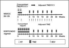 Fig 1. Study treatment schema and comparison with the European Organization for Research and Treatment of Cancer/National Cancer Institute of Canada (EORTC/NCIC) standard glioblastoma regimen (1). BEV, bevacizumab; RT, radiotherapy; TMZ, temozolomide.