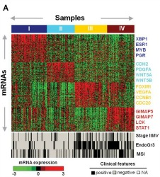 Fig 1a. Identification of gene expression subtypes in EEC.