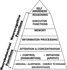 Fig 1. Neuropsychological pyramid (adapted from the original pyramid by Yehuda Ben-Yishay, PhD, at NYU School of Medicine). Functions are inter-related such that neurobehavioral problems are theorized to underlie and therefore exacerbate neurocognitive problems.