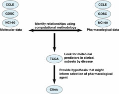 Fig 2. A schematic representation of various databases that might be used to move towards providing hypothesis for selection of pharmacological agents. CCLE Cancer Cell Line Encyclopedia, GDSC genomics of drug sensitivity in cancer, NCI-60 the sixty cell lines of the US National Cancer Institute, TCGA The Cancer Genome Atlas