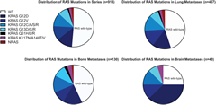 Fig. 4. Prevalence of RAS mutations in all cases and in cases with metastases to lung, bone, or brain
