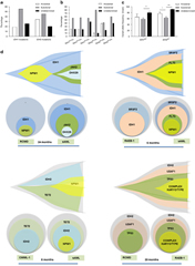 Fig 3. Analysis of clonal architecture of IDH1/2-mutated cases.