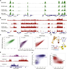 Fig 2. Validation of Chromatin Data and Sensitivity to Low-Input Samples.