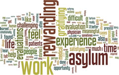"""Fig 1. Word cloud created from free text: """"Please reflect on your experience performing asylum evaluations""""."""