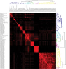 Fig 3. Covariance matrix of radiomic features.