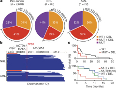 Fig 1. The frequency, scope, and prognostic value of chromosome 17p alterations in human cancers.