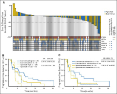 Fig 5. Study PIM4973 (ROVER) tumor response.