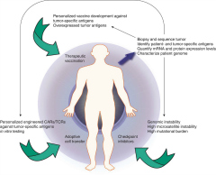 Fig 2. Strategies for personalized precision immunotherapy.