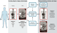 Fig 1. Advanced imaging for high-content biopsy (HCBx) and molecular phenotyping.