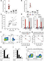 Fig 1. Elevated [K+] within TIF silences the TCR-induced anti-tumour function of mouse and human T cells.