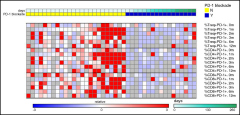 Fig 5. PD-1 expression among case and control patients displayed as heatmap.