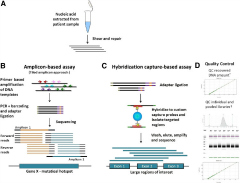 Fig 1. High-level comparison of target enrichment workflow for amplicon and capture hybridization NGS assays.