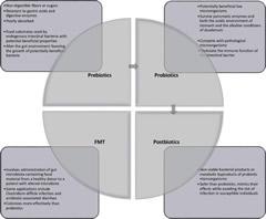 Fig 1. Current strategies of gut microbiota modulation.