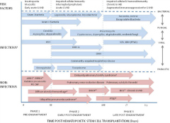 Fig 1. Infectious and noninfectious pulmonary complications of hematopoietic cell transplantation.