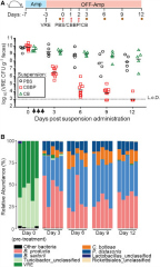 Fig 6. Administration of a Four-Bacteria Consortium Clears VRE from Densely Colonized Mice.