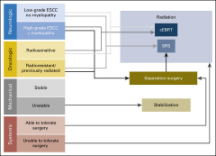 Fig 1. The neurologic, oncologic, mechanicals stability and systemic disease framework.