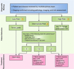 Fig 1. Treatment algorithm for non-muscle invasive bladder cancer.