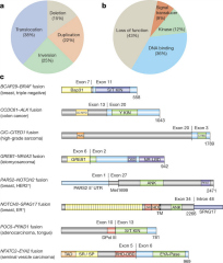 Fig 3. Diverse classes of gene fusions identified in metastatic cancers.