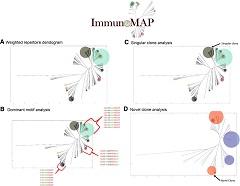 Fig 1. Elements of the ImmunoMap algorithm.