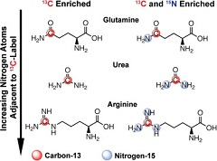 Fig. 1 Chemical structures of all compounds included in this study.