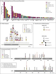 Fig. 1 Genomic Landscape of Myeloproliferative Neoplasms.