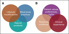 Fig. 1 Core components of integrative oncology for evidence-informed patient-centered care: (A) three main therapeutic categories, and (B) components of evidence-informed practice.