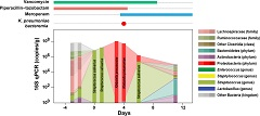 Fig. 1. Dense colonization of the intestine by K. pneumoniae preceded K. pneumoniae bacteremia. Changes in the gut microbiota of an allo-HCT patient who developed.