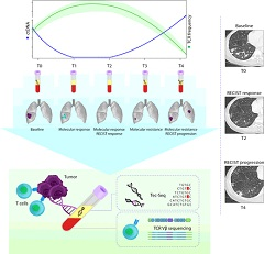 Fig 1. Overview of next-generation sequencing and T-cell analyses.