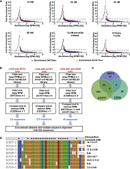 Figure 4. Bioinformatics Analyses of Illumina HT Sequencing Data from LIGS Libraries.