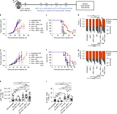 Fig 1. Anti-PD-1 before antigenic stimulation abrogates the antitumor effects of Vax+αPD-1.