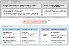 Fig 1. Approach to Choosing Systematic Therapy for Patients With Metastatic Non–Small Cell Lung Cancer.