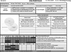 Fig 1. Clinical nurse specialist portfolio example.