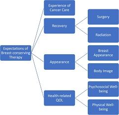 Fig.1. Conceptual Framework