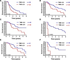 Fig 3. DFS (A) and OS (B) for the entire cohort stratified by TMB using a binary cutoff of 2.8 (third quartile). OS by TMB in patients with fusion-negative RMS (C); fusion-positive RMS (D); localized RMS (low/intermediate risk; E); and metastatic RMS (high risk; F).